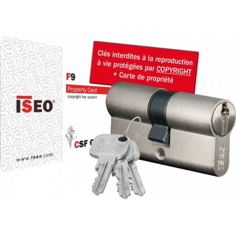 Cylindre de serrure ISEO F9 à 2 entrées de clé