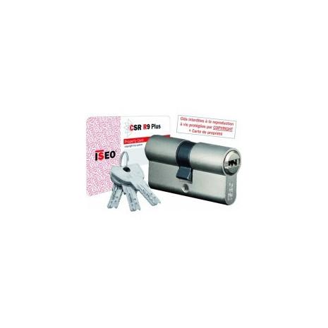 Cylindre de serrure ISEO R Plus à 2 entrées
