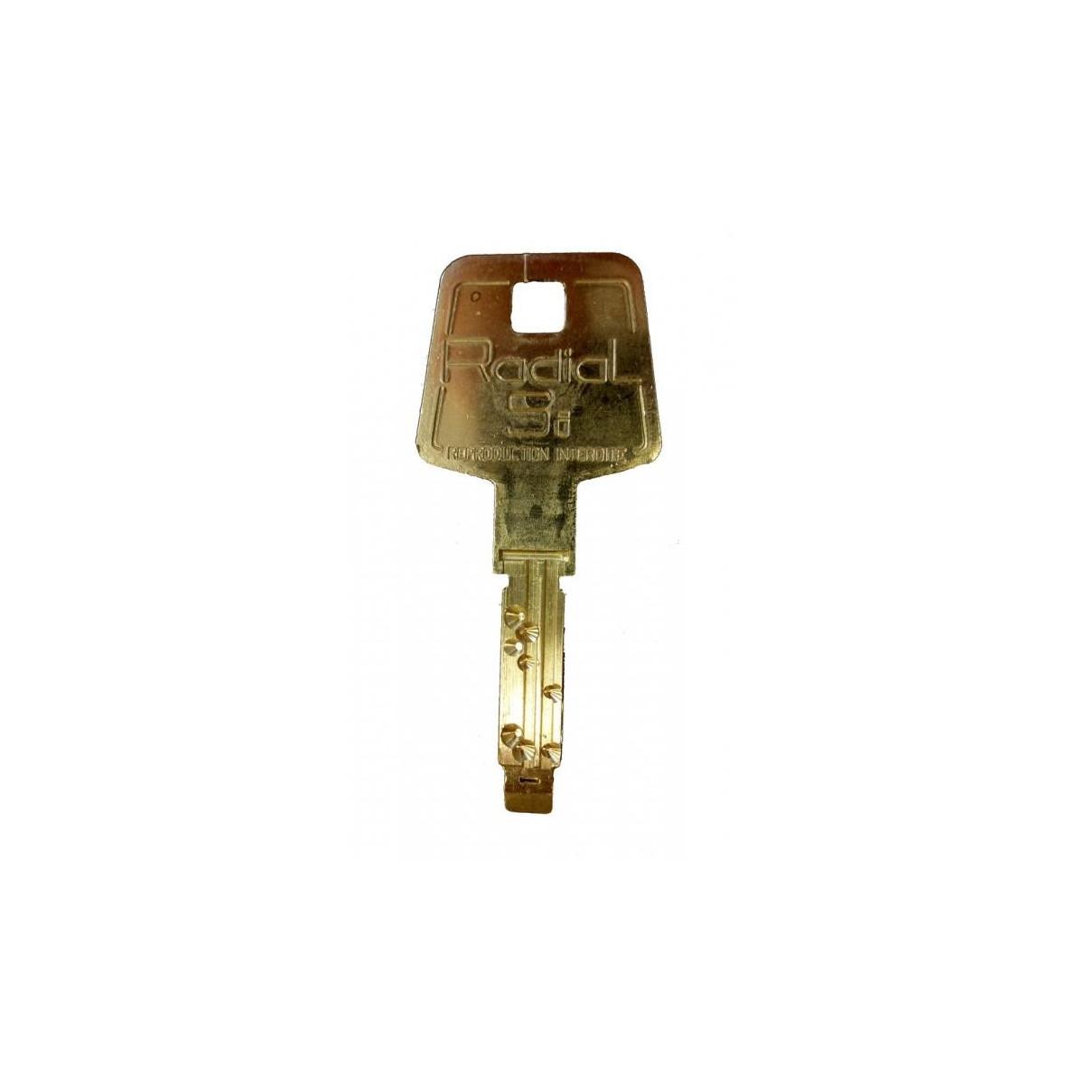 4f5ea449a76 Double de clé Vachette et copie originale de clés de marque vachette ...